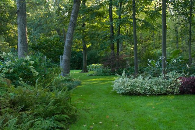 Woodland shade garden contemporary landscape chicago for Woodland shade garden designs