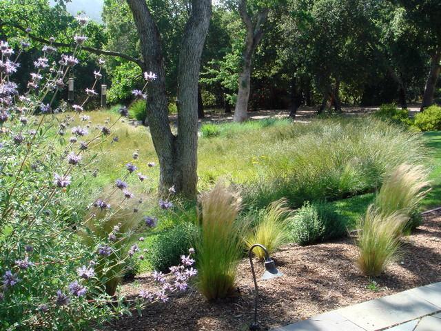 Woodside garden contemporary-landscape