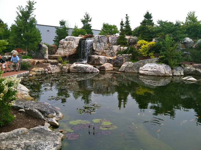 Worlds Most Extreme Ecosystem Pond Construction Certified Aquascape Contractors Eclectic Garden New York By Acorn Ponds Waterfalls