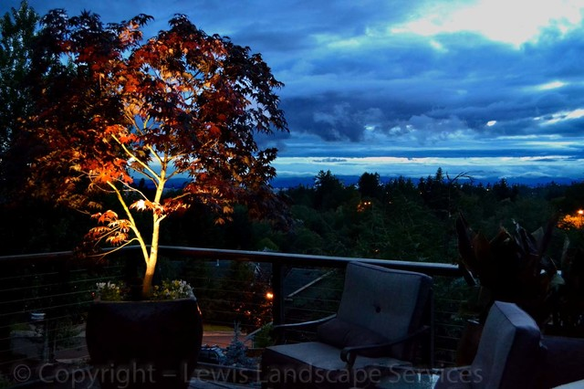 Wright Outdoor Lighting Project 2013 Contemporary Landscape