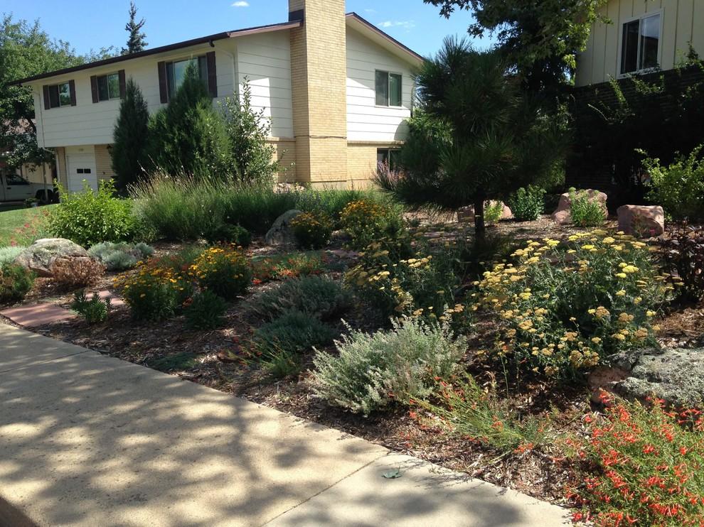 Xeric Front Yard Garden - Southwestern - Landscape ...