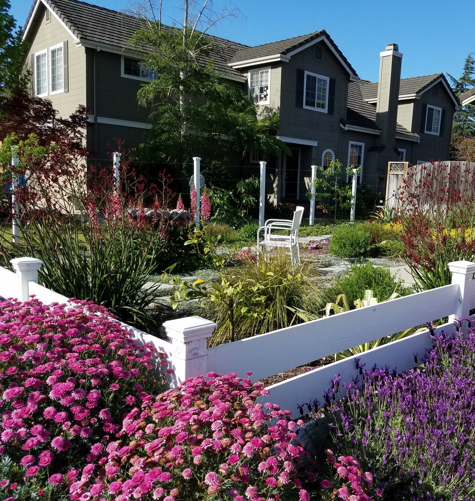 Year-round Color in Soquel