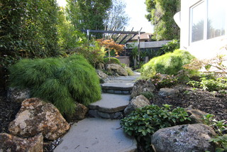 Zen And Subtropical Landscape Tropical Garden Auckland By Zones Landscaping Specialists