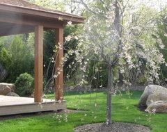 Zen Garden w Yoga & Amethyst Meditation Pavilion asian-landscape