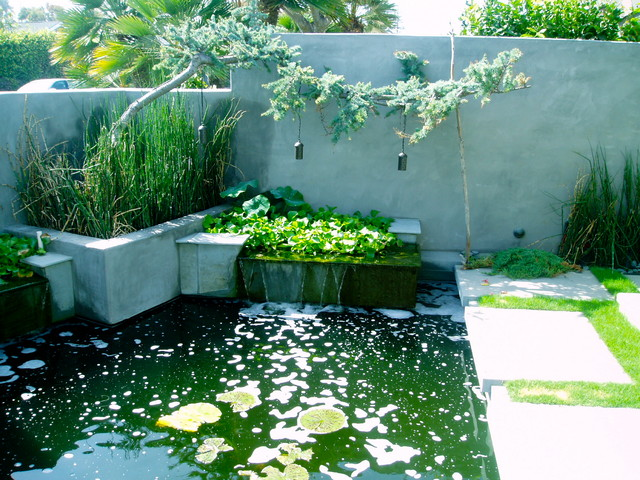 Zen koi floating steps beach plantings bungalow for Modern koi pond design photos