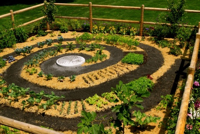Zen Vegetable Gardenu2026 To Die For! - Contemporary - Landscape - Providence - By Frank Crandall ...