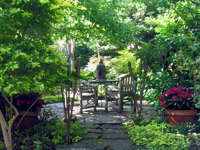 Design ideas for a landscaping in Houston.