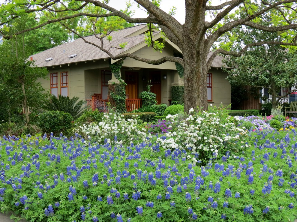 Design ideas for a traditional drought-tolerant landscaping in Houston.