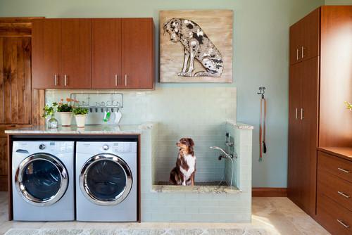 dog wash room