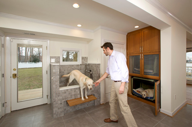 A laundry room with bunk beds and a shower for muddy dogs for Dog room furniture