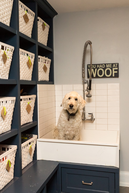 8 tips for installing a dog washing station hanna solutioingenieria Gallery