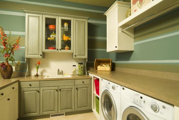 Van Singel Lake 2 traditional-laundry-room