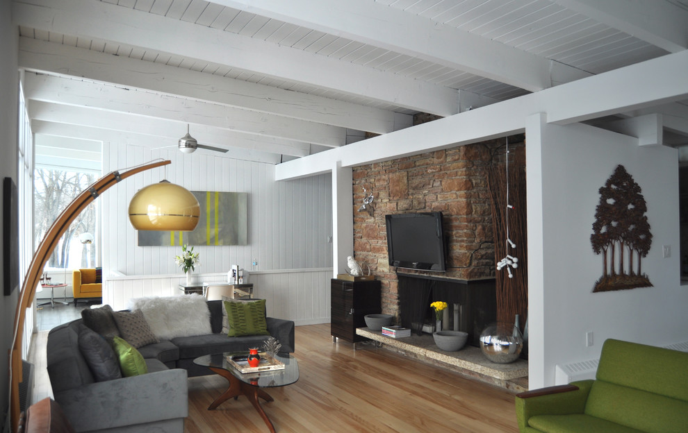 Living room - mid-century modern living room idea in Other with a standard fireplace