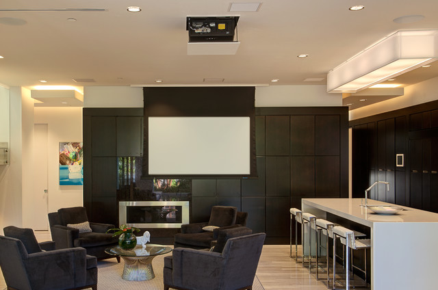 Hidden Projector Screen | Houzz