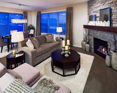 210 Cranston Gate SE contemporary-living-room