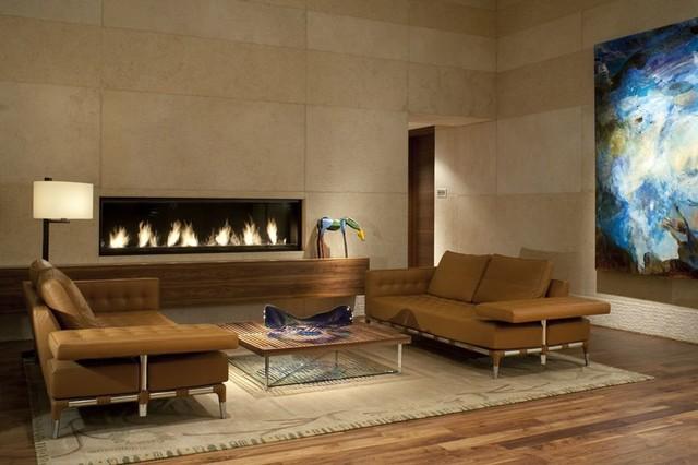 6' Custom Gas Fireplace contemporary-living-room