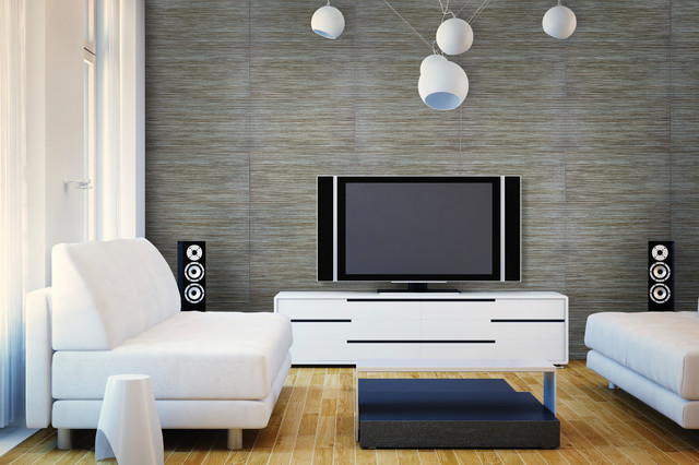 Accent Walls Contemporary Living Room