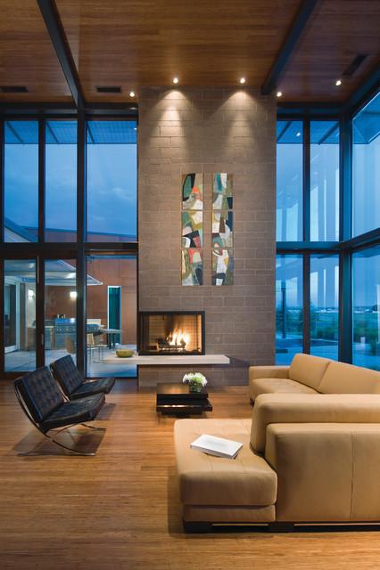 extraordinary houzz contemporary living room | Airport House - Denver Contemporary Residence ...