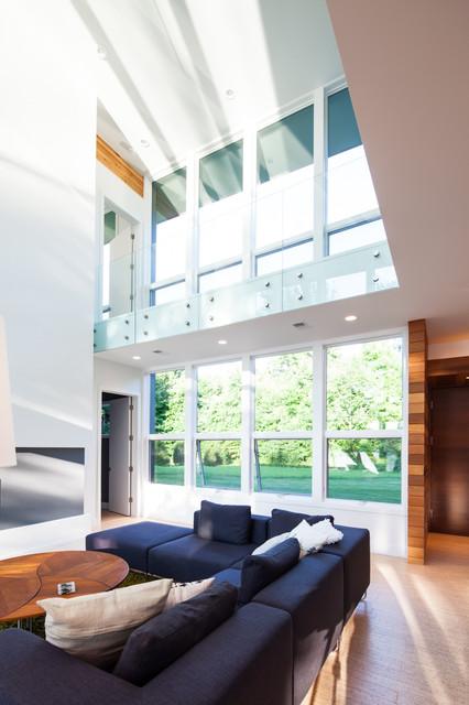 Allegan Lake Residence contemporary-living-room