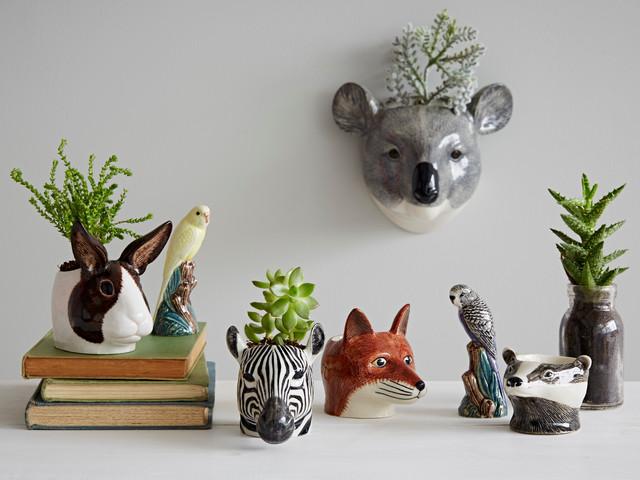 Animal Accessories tropicale-soggiorno