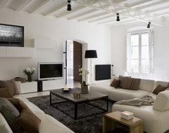 Apartment Gothic Quarter contemporary-living-room