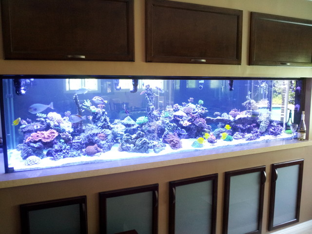 Aquarium and Cabinets - Contemporary - Living Room - los angeles - by Cornerstone Construction