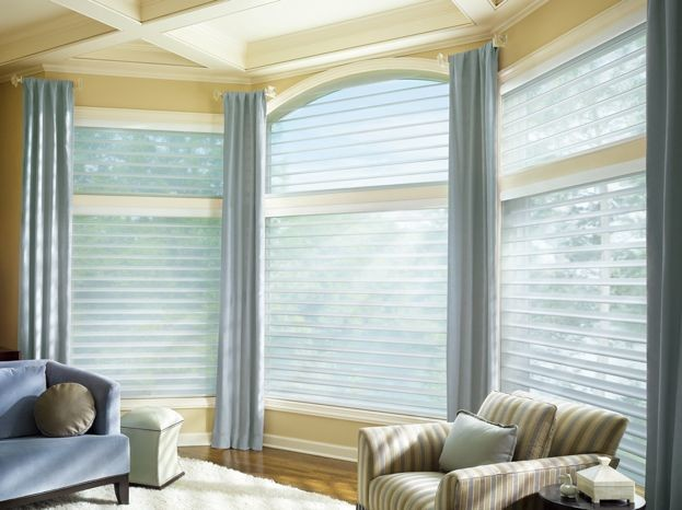 Arched window treatments by hunter douglas - Houzz window treatments living room ...