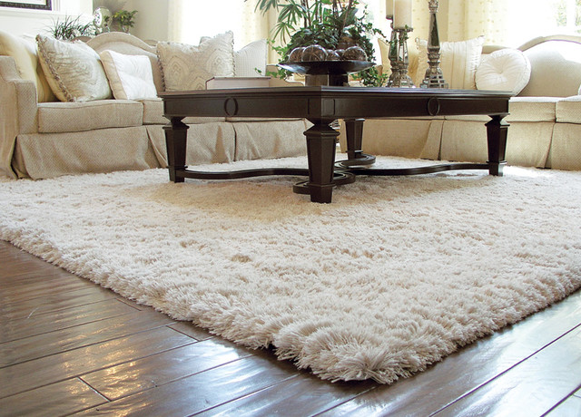 Auroroa Borealis Shag Rug - Traditional - Living Room - Orange ...
