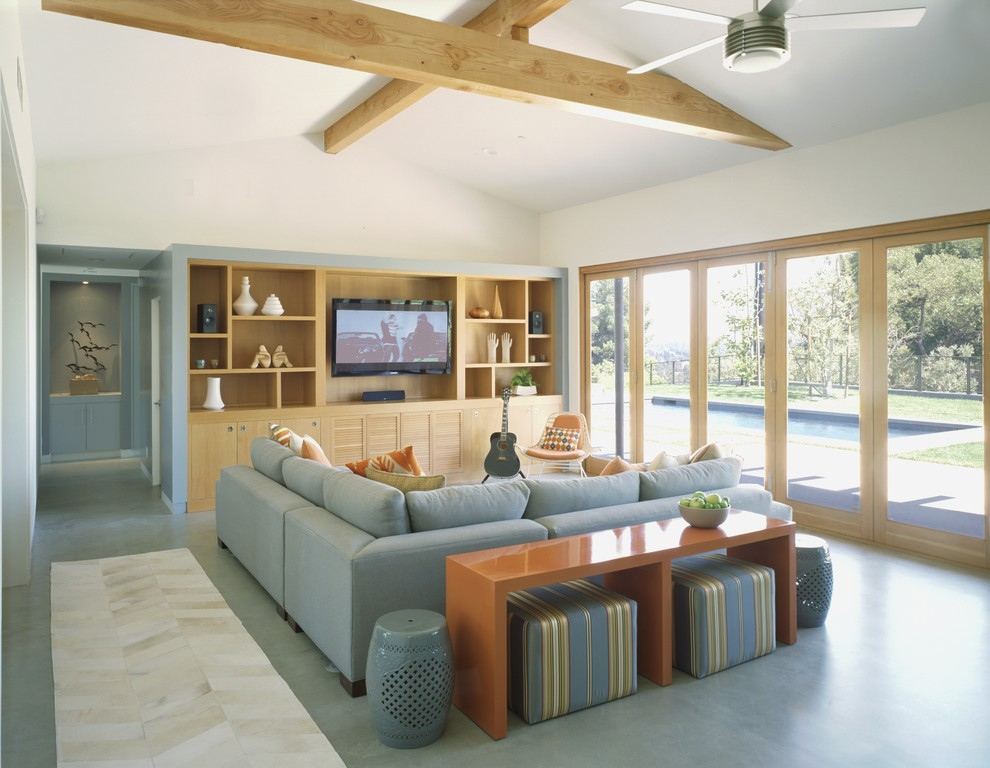 Living room - contemporary living room idea in Los Angeles with a media wall