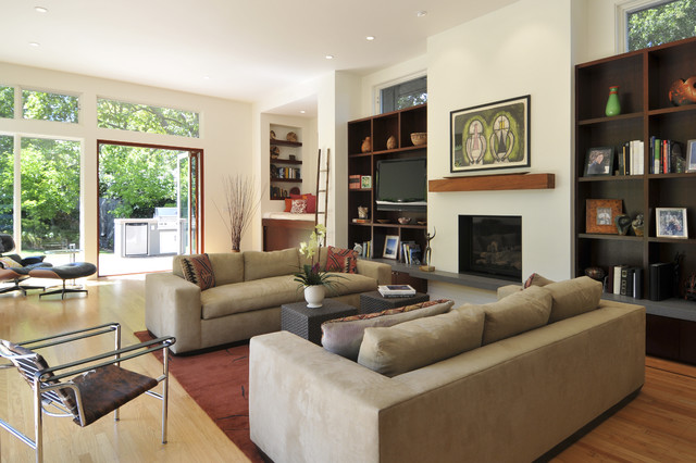 Ana Williamson Architect contemporary living room