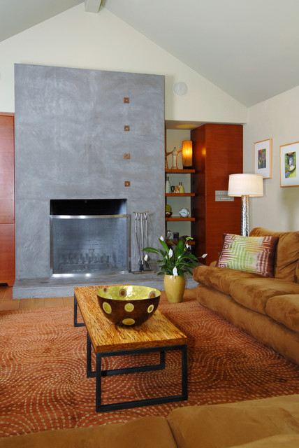 Berkeley contemporary-living-room