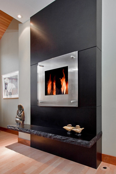 Black Granite Monolithic Fireplace Modern Living Room  : modern living room from www.houzz.com size 388 x 580 jpeg 51kB