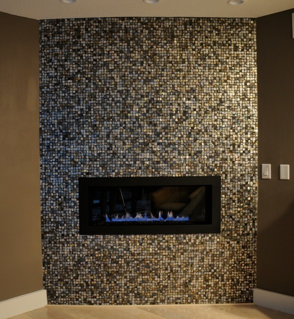 Black Lip Mother Of Pearl Fireplace Modern Living Room