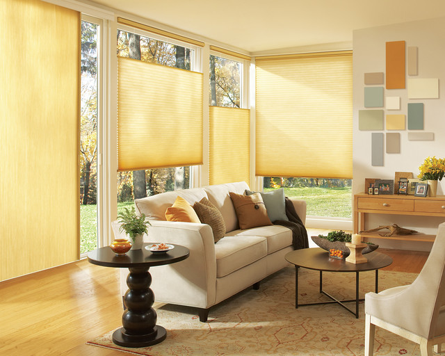 Blinds & Shades contemporary-living-room