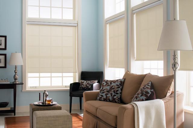 Magnificent Blinds Com Light Filtering Roller Shades Traditional Interior Design Ideas Gentotryabchikinfo