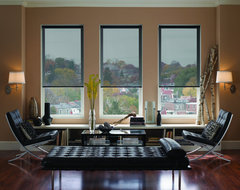 Blinds.com Brand Signature Solar Shades contemporary-living-room