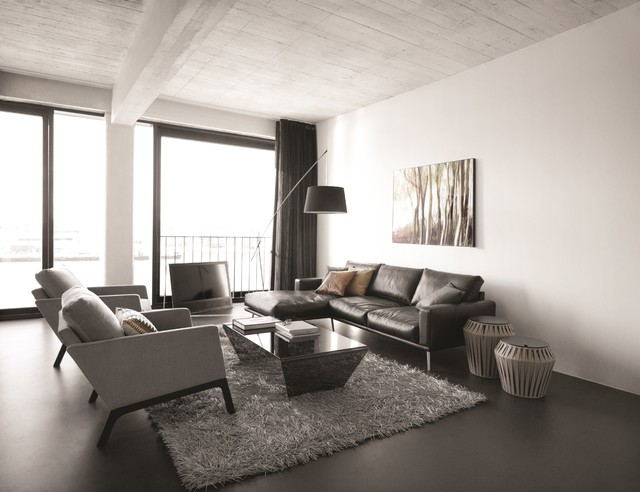 BoConcept Carlton Sofa U0026 Monte Armchair Contemporary Living Room