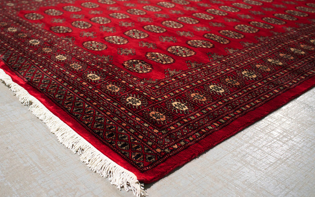 Bokhara Rug Traditional Living Room