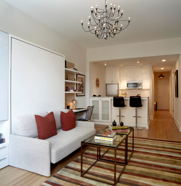 Brooklyn Heights Eclectic Transitional Design Furnish Studio Apartment Living Room