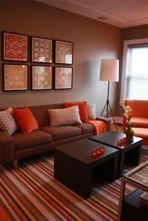 cambridge small apartment  contemporary  living room
