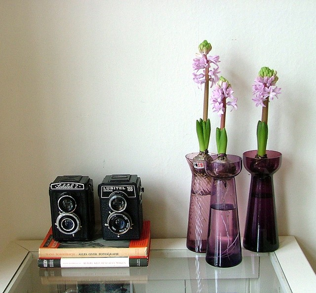 Cameras and hyacinths eclectic living room
