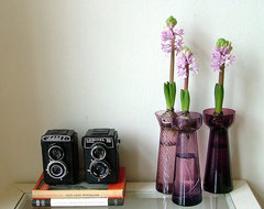 Cameras and hyacinths midcentury-living-room
