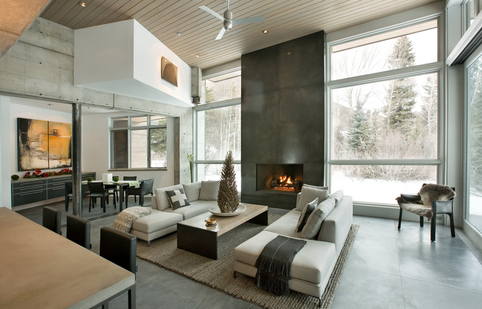Inspiration for a contemporary concrete floor living room remodel in Denver