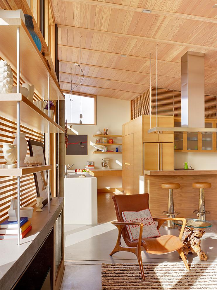 Living room - scandinavian open concept living room idea in San Francisco