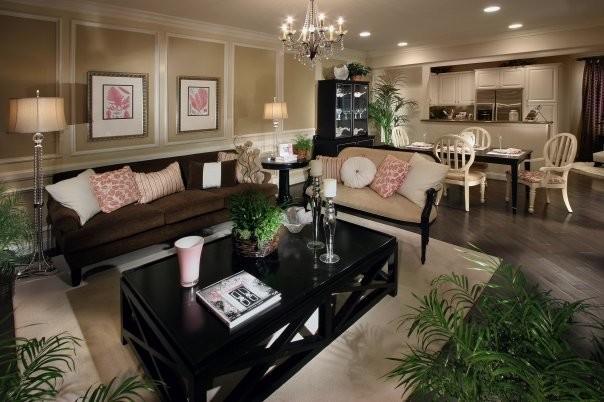 Celamonte traditional-living-room