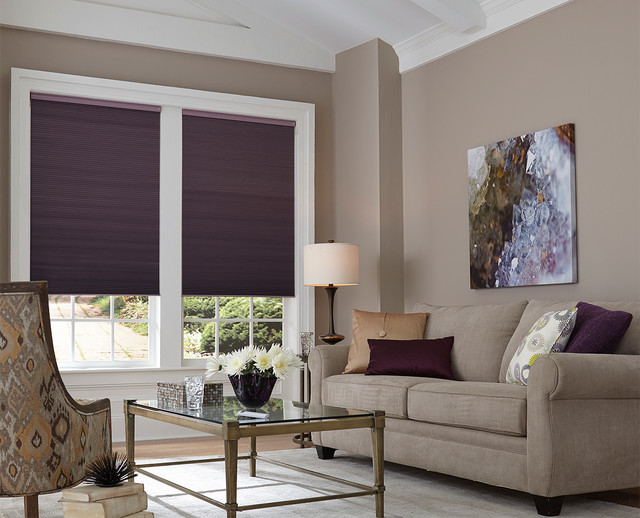 Cellular shades contemporary living room houston for Living room with blinds