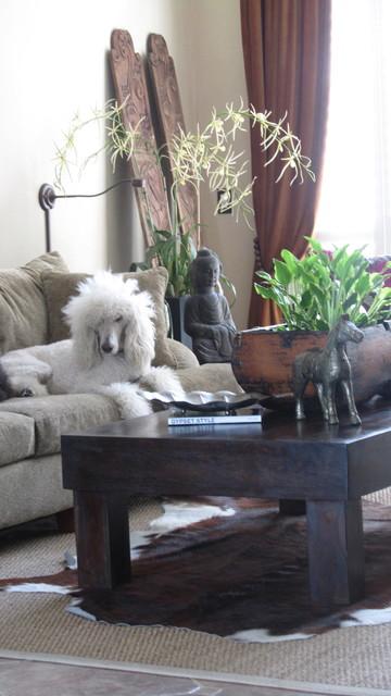 Cesar eclectic-living-room