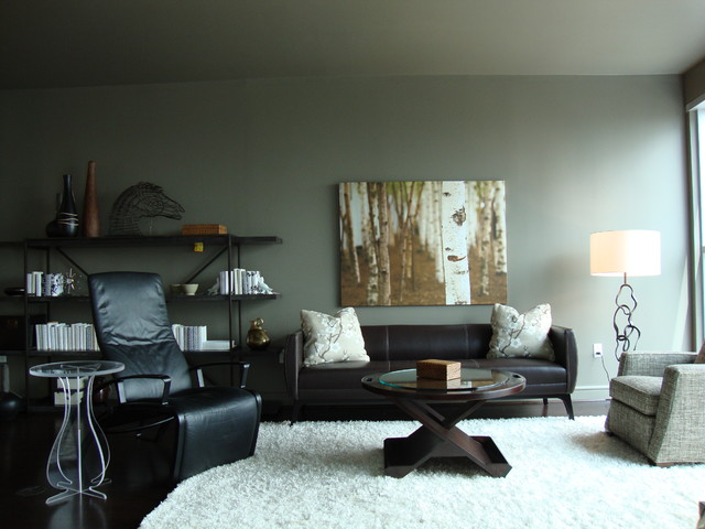 Charlotte NC - Highrise contemporary-living-room