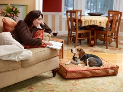 Chili Dog Bed Collection traditional-living-room