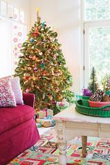 Darf man eigentlich noch einen echten Weihnachtsbaum aufstellen?